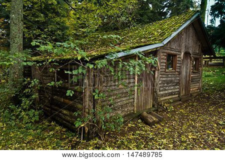 Wooden hut in a forest at mountain Goc in Serbia