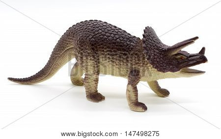 Triceratops dinosaurs toy on white background, toy