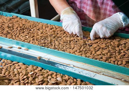 Manual phase of rejection of useless almonds
