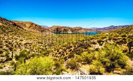 Canyon Lake and the Desert Landscape of Tonto National Forest along the Apache Trail in Arizona, USA
