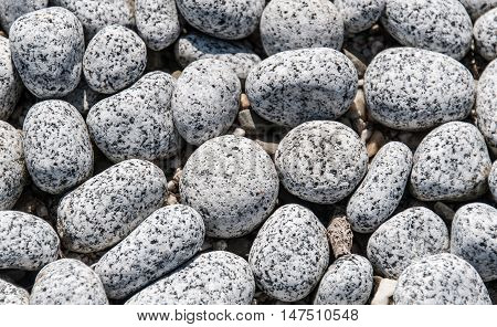 Pattern of round white and black stones at the coat of a sea.