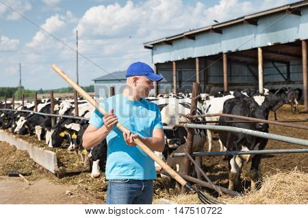 Farmer portrait against background of herd of cows