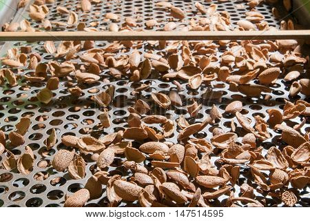 The Working Of Almonds