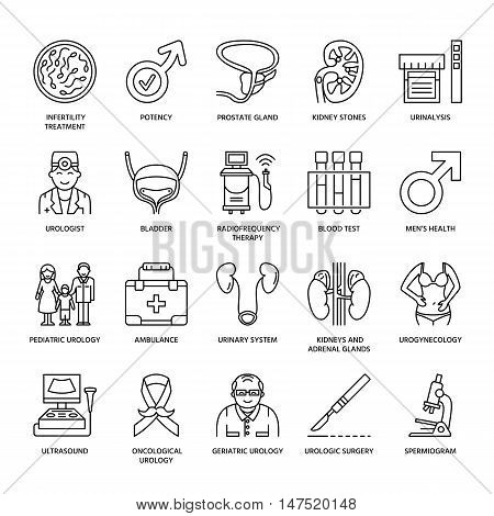 Modern vector line icons of urology. Elements - urologist bladder oncological urology kidneys adrenal glands prostate. Linear medical pictograms with editable stroke for clinic potency problem.