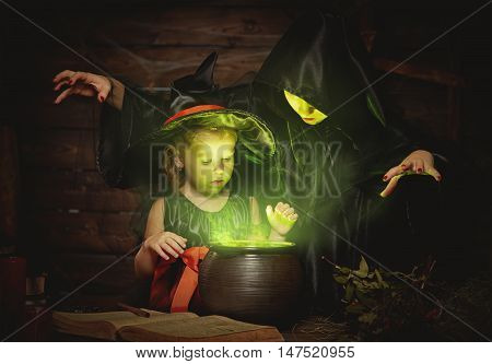 Halloween. two witches old and young preparing a potion in the cauldron