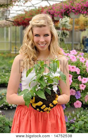 Beautiful young woman holding plant inside green house