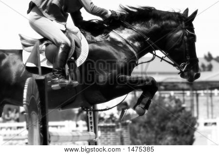 Crossing The Hurdle – Equestrian Theme (B&W)