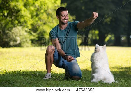 Young Man And Dog German Spitz Playing Together
