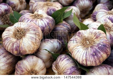 Fresh Garlic Bulbs Full Of Flavor On A French Market Stall
