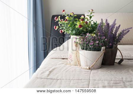 The bed with Pink rose flower purple lavender flower and red mushroom flower on flower pot sunlight from windows.