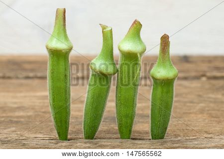 four okra standing on a wooden table background