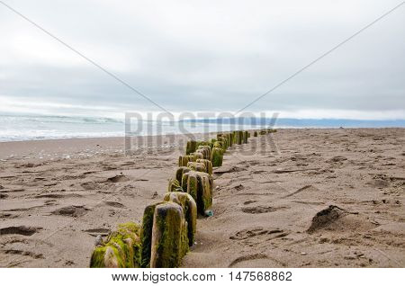 A line of stakes in the sand at the beach with the ocean in the background at La Serena in Chile, South America