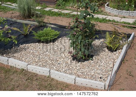 Earth is covered with a special cloth on top of the gravel. Water is supplied to the plants, and there is no sunlight, so the weed does not grow