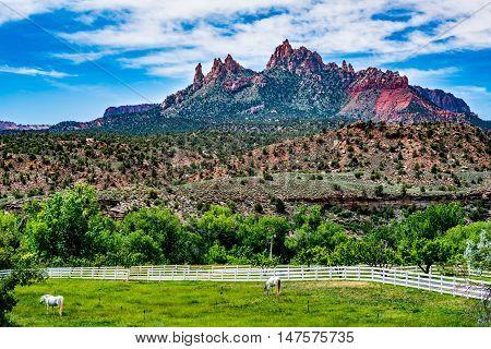 Near Zion National Park, Utah.
