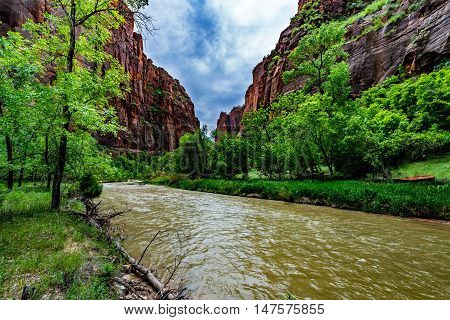 Beautiful Cliffs and Rock Formations with Trees Lining the River in Zion National Park Utah.