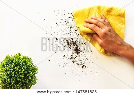 The girl wipes the dirt off a white surface