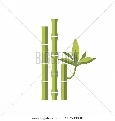 Bamboo vector flat illustration. Leaf green design, japanese and chinese bamboo, asia isolated white icon. Spa icon