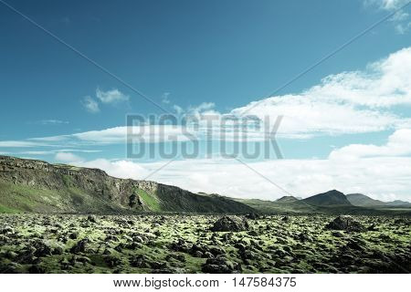 volcanic mossy landscape, Iceland