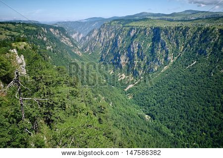 Susica Canyon view from Nedajno in Durmitor National Park, Montenegro