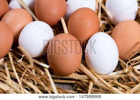 Close up view of brown and white fresh whole eggs in straw on wood. Select focus on front brown egg.