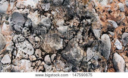 Myslachowice Conglomerate stone usable as texture or background