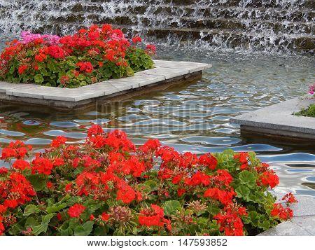 Garden design flowerbed and landscaped for background
