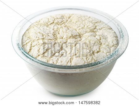 Yeast dough in a glass bowl on white