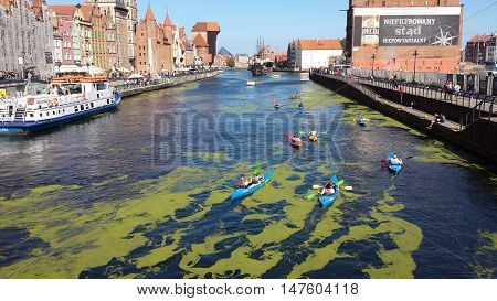 Gdansk, Poland - September 17, 2016: A classic view of the old city of Gdańsk on the Motlawa River. Kayakers on the river Motlawa. On the river green patches of duckweed. Tourists walk along the waterfront.