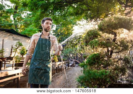 Young handsome gardener smiling, watering, taking care of plants.