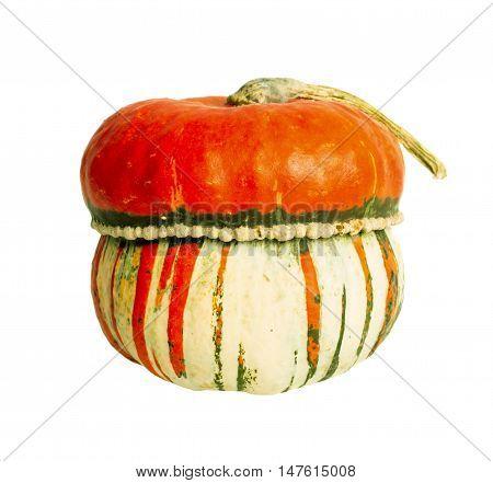 Colorful fresh ripe pumpkin isolated on white backgorund