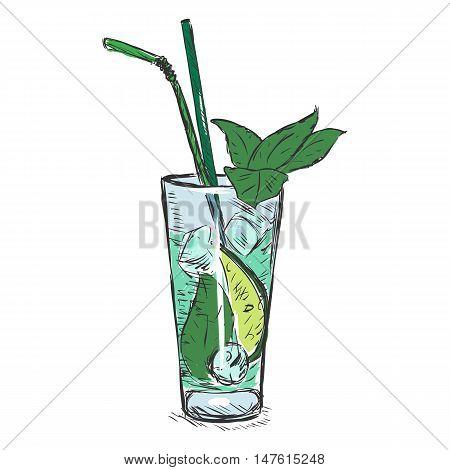 Vector Color Sketch Cocktail Mojito