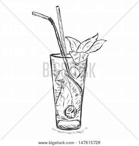 Vector Sketch Cocktail Mojito With Mint Leaves And Straws