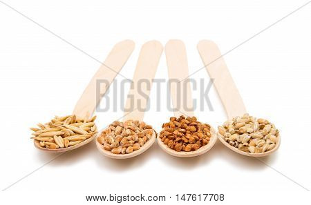 barley wheat buckwheat oat groats in a wooden spoon isolated on a white background