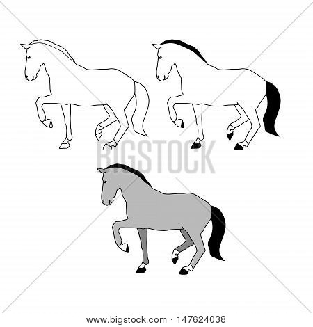 The contour of the horse on a white background a gray stallion walks. Vector illustration set of abstract images