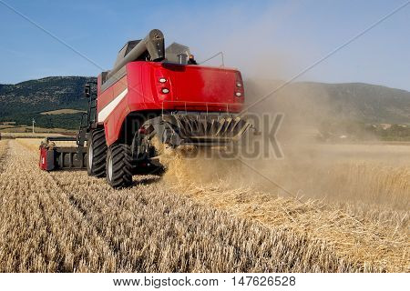 Wheat Field In Apulia With A Combine Harvester In Action
