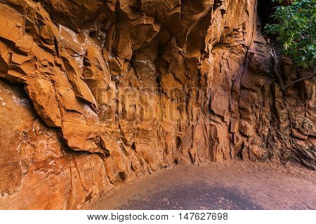 Abstract Sandstone Wall in Zion National Park Utah USA