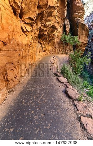 Mountain road along the sandstone cliffs at Zion National Park Utah