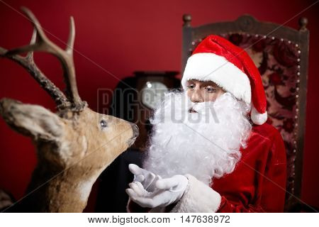Santa Claus communicating with deer