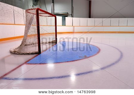 Hockey Or Ringette Net  in Rink