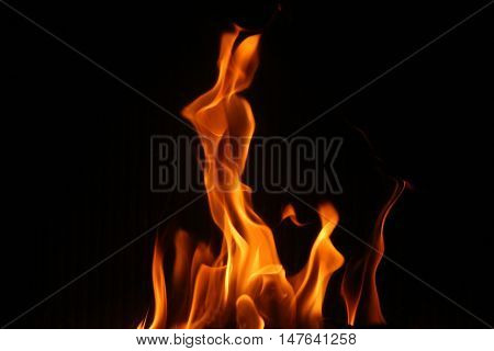 dancing flame of fire in the fireplace tongues on a black background