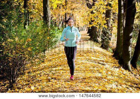 Young woman running and training in beautiful fall nature