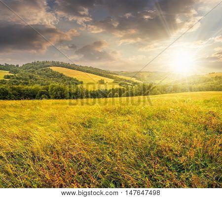 Rural Field Near Forest At Hillside At Sunset