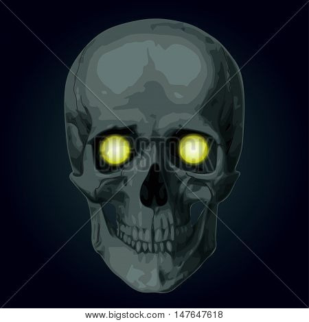 Skeleton skull cranium braincase brainpan pericranium death's head. Vector square closeup frontal view beautiful scary Halloween illustration sign poster isolated on blue background to holiday