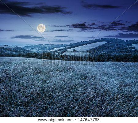 Rural Field Near Forest At Hillside At Night