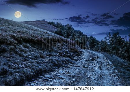 Road On Hillside Meadow In Mountain At Night