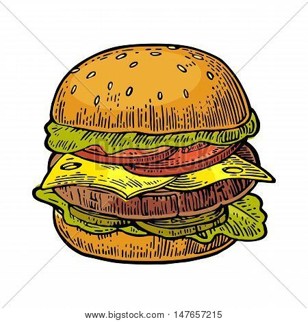 Burger include cutlet tomato cheese cucumber and salad isolated on white background. Vector color vintage engraving illustration for poster menu web banner info graphic