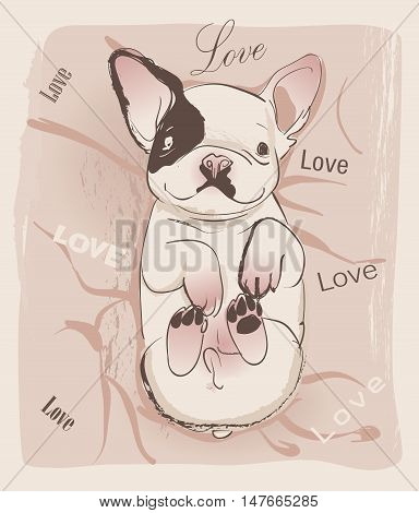 little cute glamour bulldog on the pink background