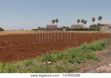 plowed field next to houses in the spring