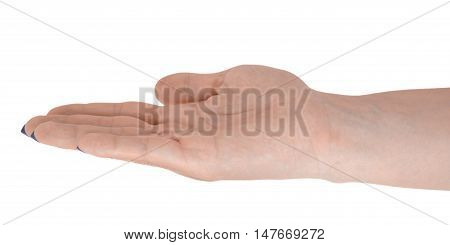 Open hand giving something middle-aged female's skin blue manicure. Isolated on white background.