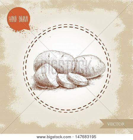 Hand drawn sketch style illustration of ripe potatoesand slices. Eco food vintage vector illustration